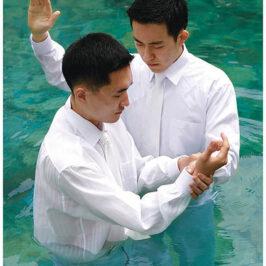 Jesus and Bro. Johnson: An Incarnation