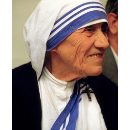 Teresa of Calcutta, Mother, Blessed, Champion of the Stranger